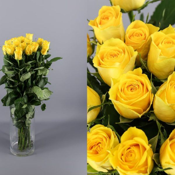 160 rosas amarillas